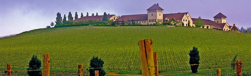 World-Class Vineyards