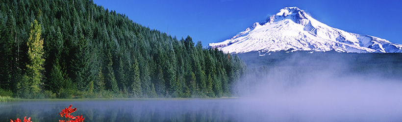 Mount Hood above Trillium Lake